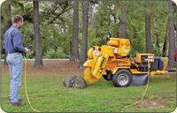 Tree service and tree care in Winston Salem, NC